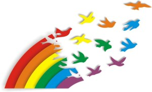 cooperativismo arco íris